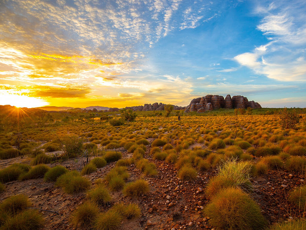 Discover Bungle Bungles (1 night at Wilderness Lodge)   Explore the Kimberleys with Kingfisher Tours