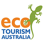 eco tourism australia - Kingfisher Tours December 2020